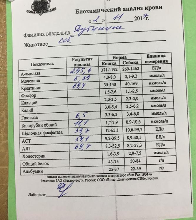 Анализ крови для похудения в новосибирске