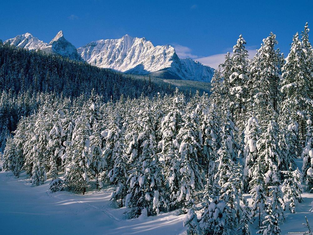 Заснеженные горы 2.jpg