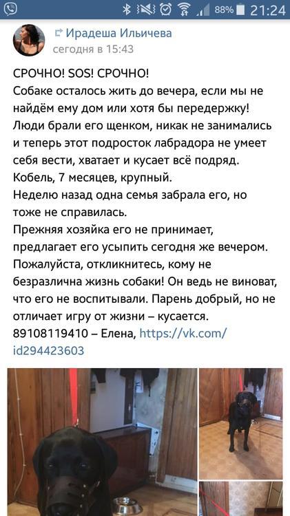 29425057_1631013876977102_5676653851306885120_o.jpg