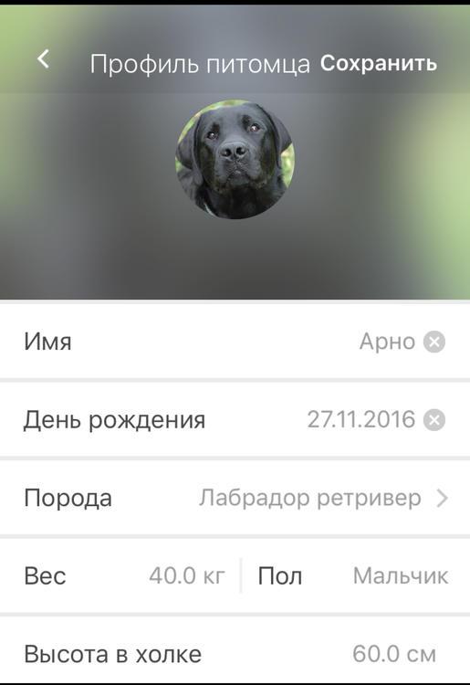 профиль.jpg