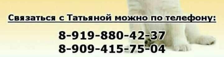 32643284_20103039425553771_5324710555896774656_n.jpg