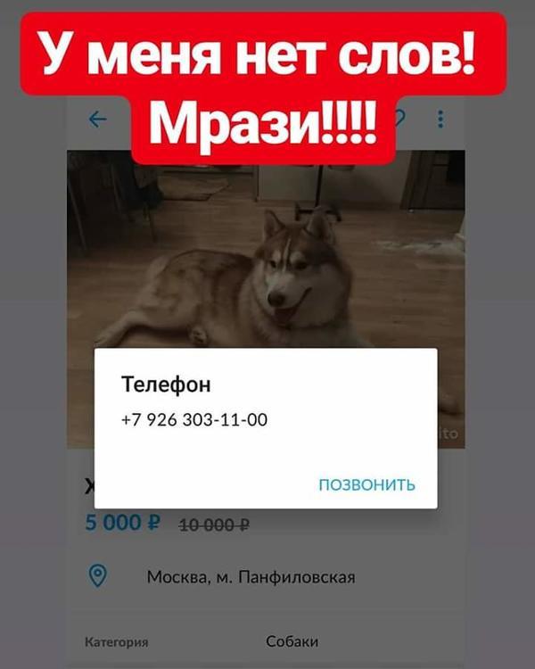FB_IMG_1544085451391.jpg
