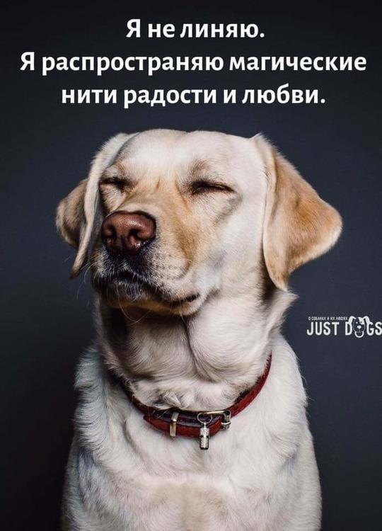 FB_IMG_1547810692488.jpg