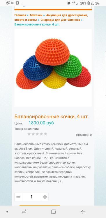 Screenshot_20190210-202617_Samsung Internet.jpg